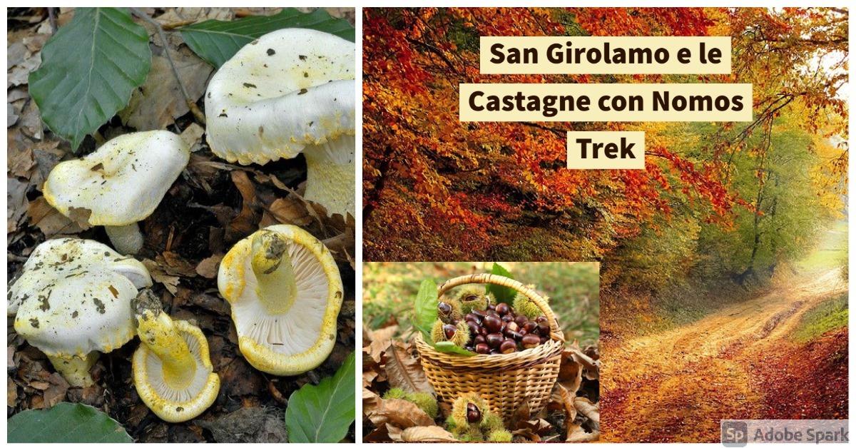 <strong>San Girolamo e le Castagne</strong>